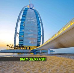 Dubai Bus Tour